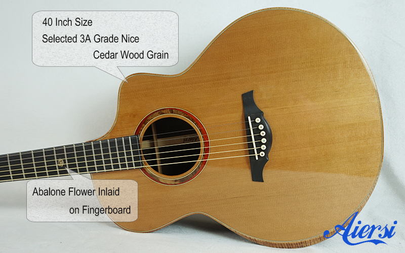 Aiersi Double Top Artist Acoustic model