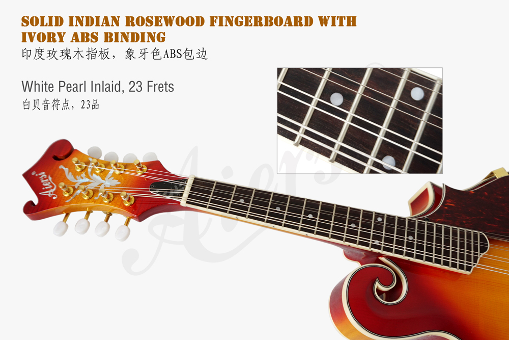 aiersi brand figured maple body F style mandolin (3)