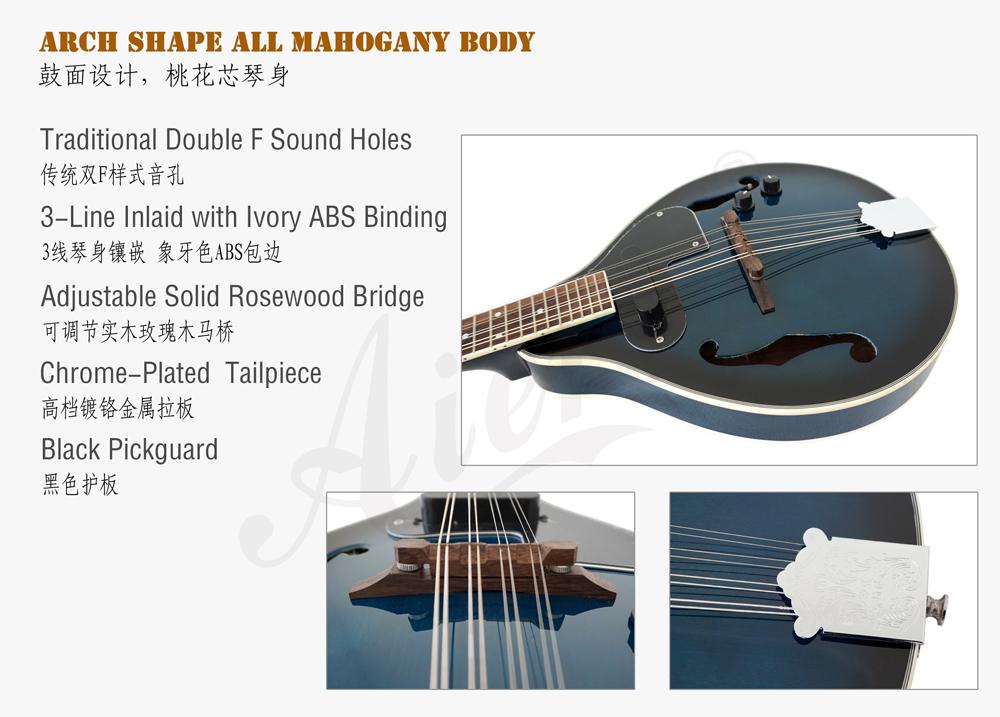 blueburst colour electric mandolin for sale