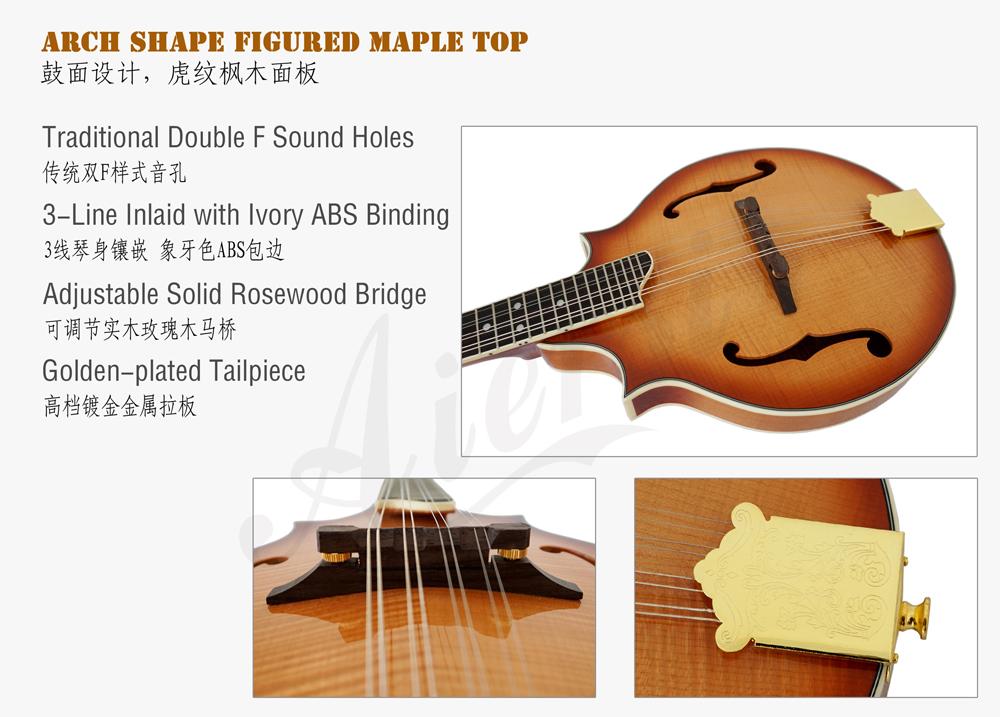 figured maple body F style mandolin