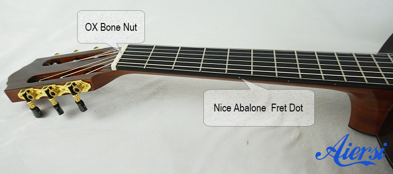 Aiersi High Quality Guitar Model