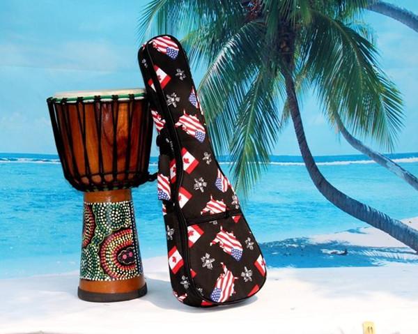 2016 aiersi brand padding color pattern ukulele bag (3)