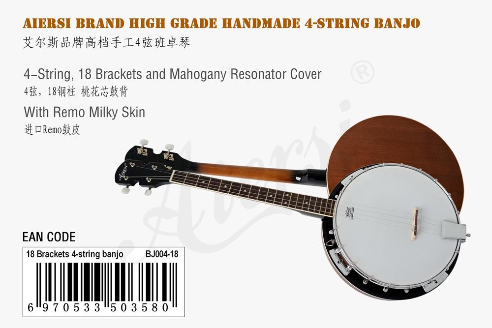 aiersi brand 4-string banjo for sale   (1)