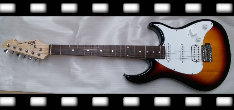 peavey guitar for sale (10)