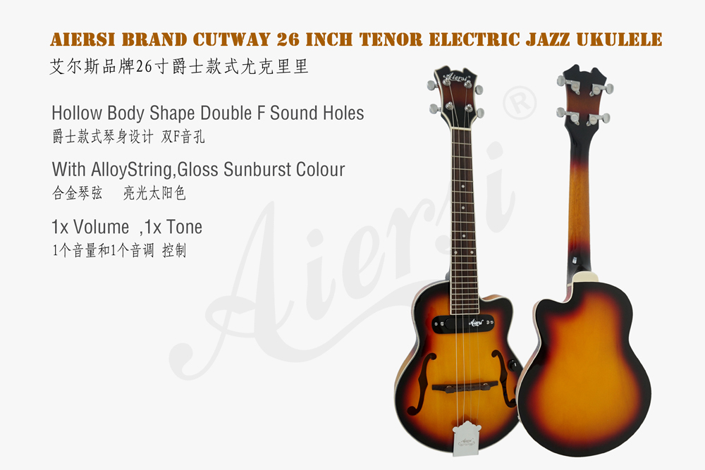 aiersi brand hollow body jazz electric guitar (1)