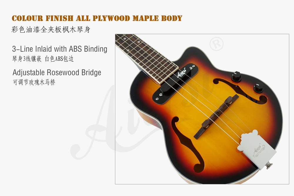 aiersi brand hollow body jazz electric guitar (2)