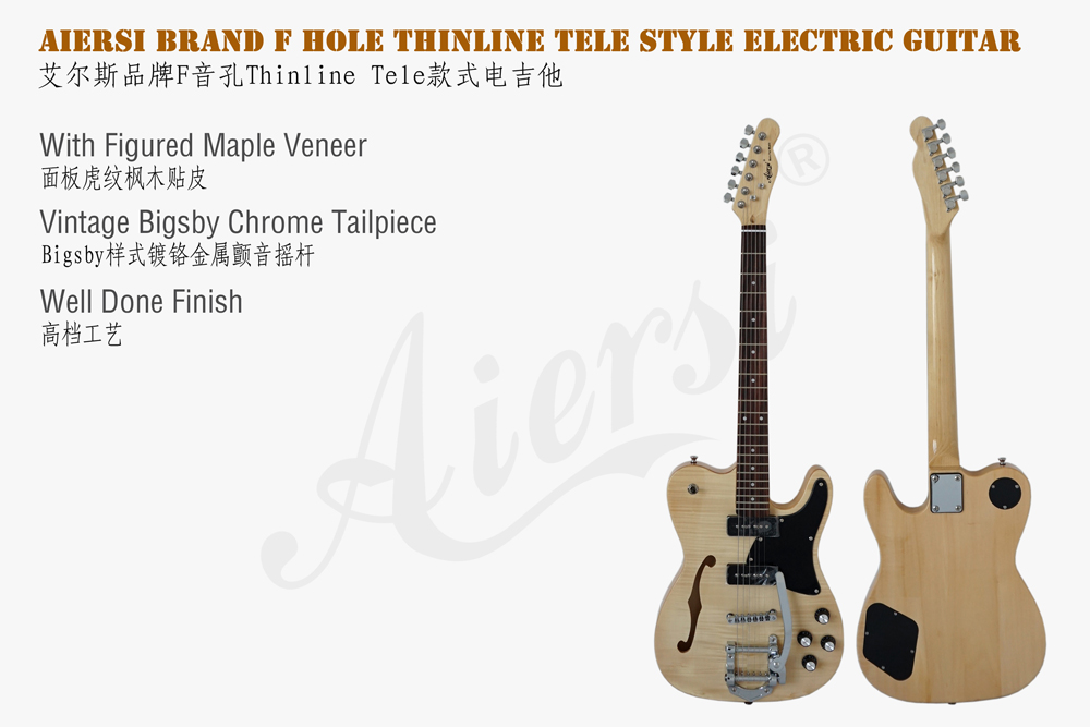 Aiersi brand F hole tele style bigsby electric guitar (2)