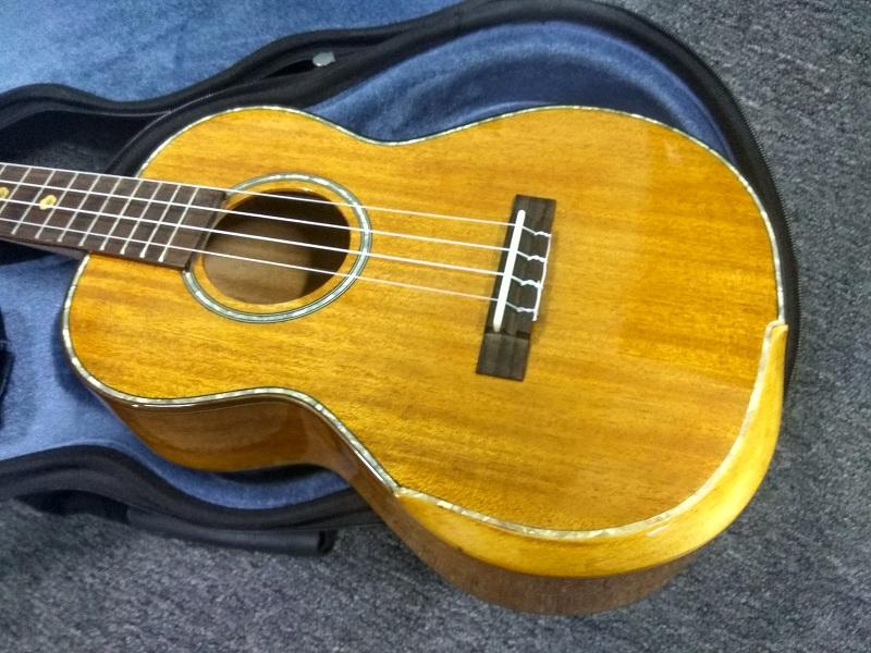 aiersi brand acoustic fingerstyle ukulele  (2)