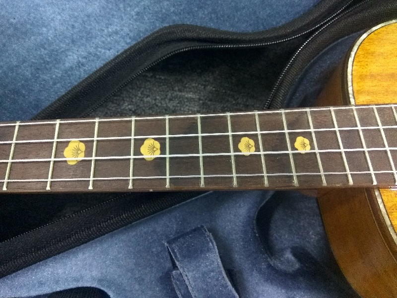 aiersi brand acoustic fingerstyle ukulele  (4)
