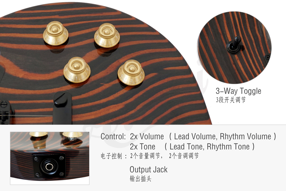 aiersi brand zebrawood body LP style guitar  (2)